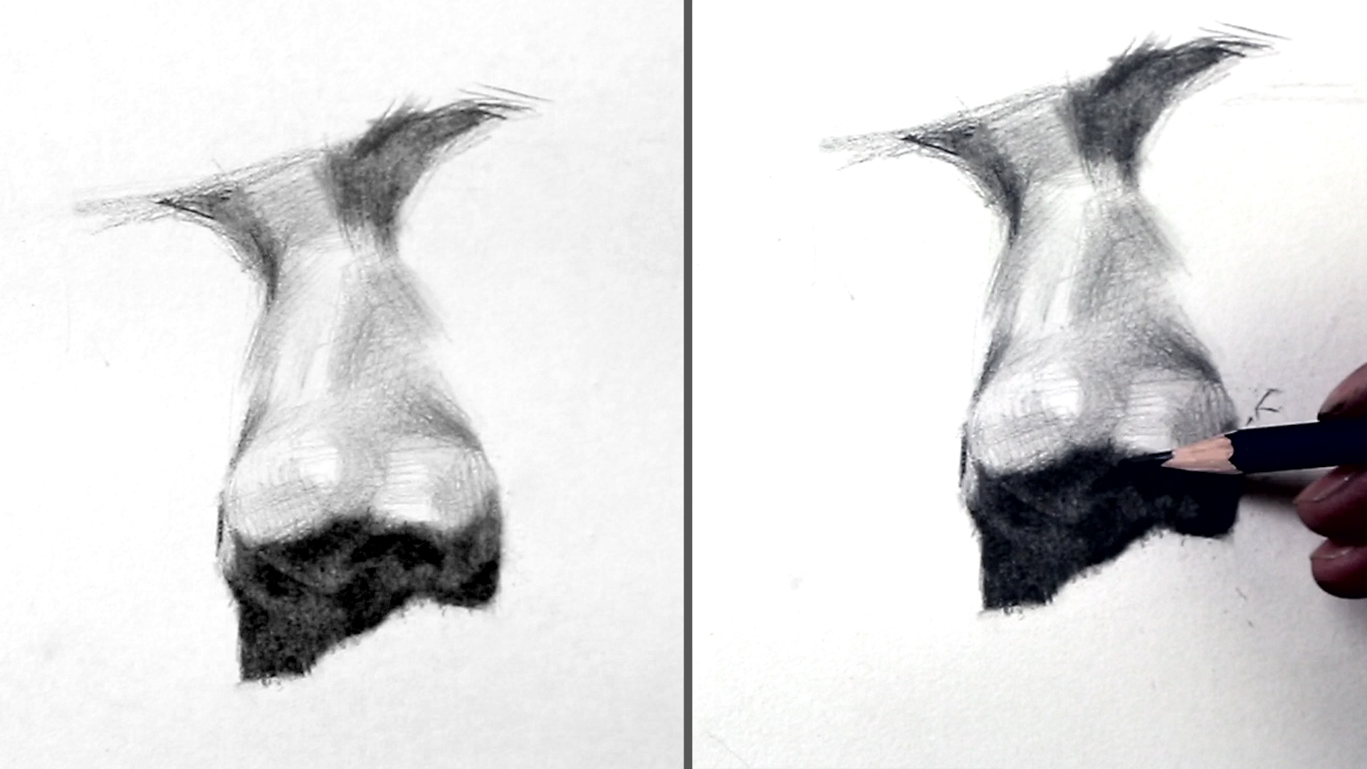 素描头像之黑白灰 2016-04-08 18:47:26 正面鼻子的画法 by 正面鼻子